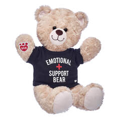 Online Exclusive Happy Hugs Teddy Emotional Support Bear Gift Set, , hi-res