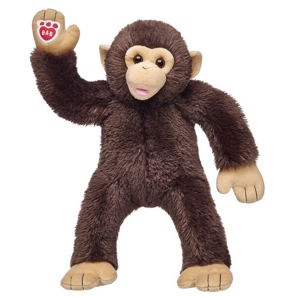 Chimpanzee, , hi-res