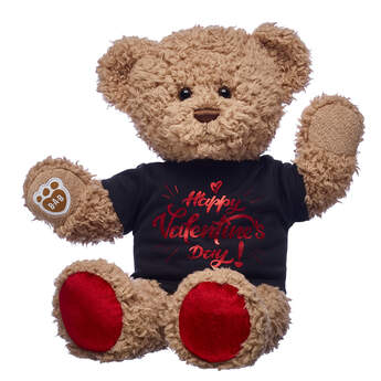 teddy bear with happy valentines day tee gift set