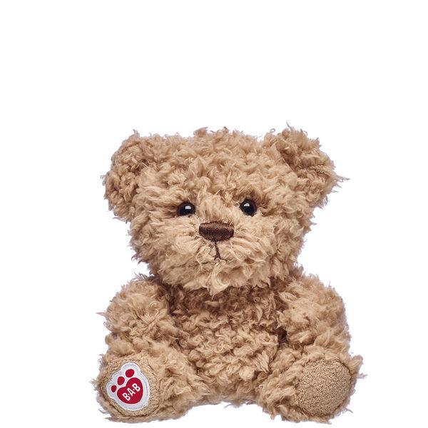 Small Timeless Teddy Bear Build-A-Bear Buddies Collection
