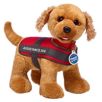 Promise Pets™ Copper Golden Retriever Assistance Dog Gift Set, , hi-res
