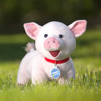 Oink! Pigs are known for being smart, curious & social creatures. These pets need space because they can grow to be quite large! Personalise it with outfits and accessories to make the perfect gift.