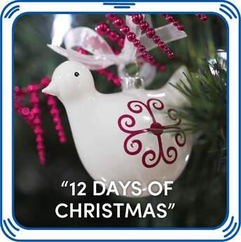 """12 Days of Christmas"" - Build-A-Bear Workshop®"