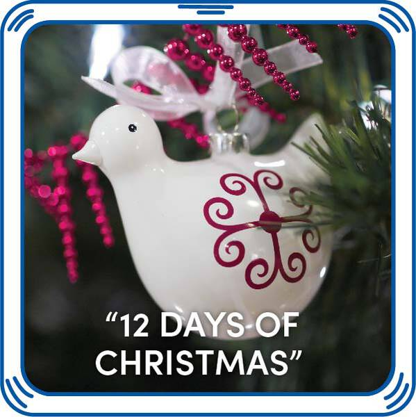 """12 Days of Christmas"" - Build-A-Bear Workshop®"