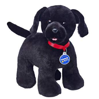 2c2ef5f19d5 Labrador Retrievers are not only great at retrieving