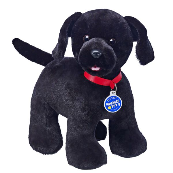 Build A Bear Promise Pets Black Labrador