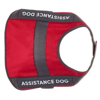 Promise Pets™ Assistance Dog Vest - Build-A-Bear Workshop®