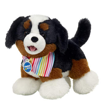 Online Exclusive Promise Pets™ Bernese Mountain Dog Rainbow Gift Set, , hi-res