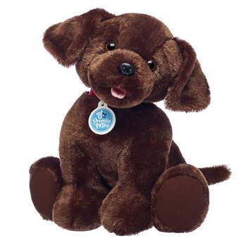 Online Exclusive Promise Pets™ Chocolate Lab - Build-A-Bear Workshop®