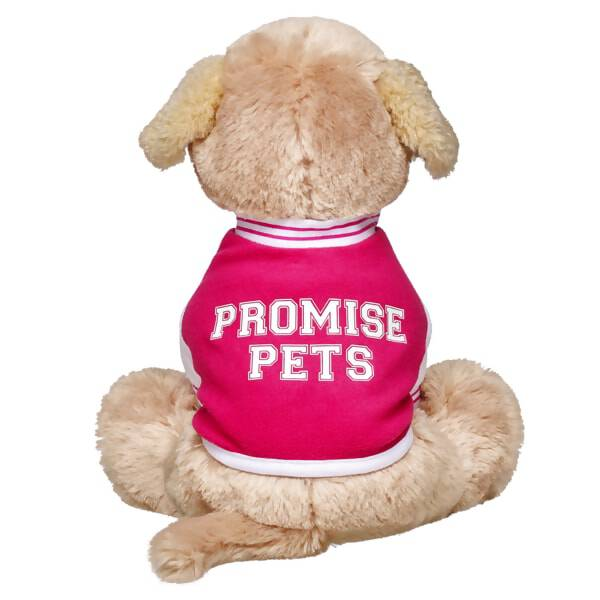 Those active Promise Pets™ will look stylish and sporty in this cute varsity jacket. The pink jacket has white sleeves and collar with pink stripes and PROMISE PETS varsity lettering on the back.