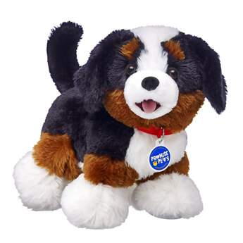 Bernese Mountain Dogs are loyal guardians with a love for all outdoor activities. Known for their tri-colored coats, they're very gentle and can even be a little shy at times. Personalize your stuffed Bernese Mountain Dog with outfits and accessories to make the perfect unique gift!