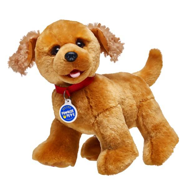 Copper Golden Retrievers are sweet and caring. They share secrets, love to cuddle, and chase their tails. This plush is ready to share secrets with you.