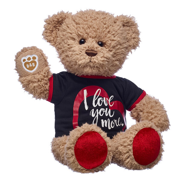 teddy bear with love you more t shirt valentines day gift bundle