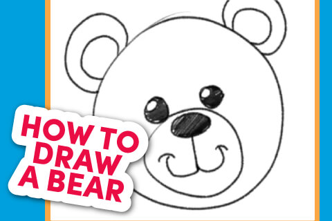 How to Draw a bear - Bear head line drawing