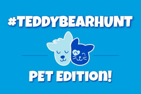 Teddy Bear Hunt Pet Edition - Illustrated animals