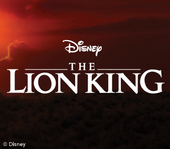 Disney's The Lion King Party