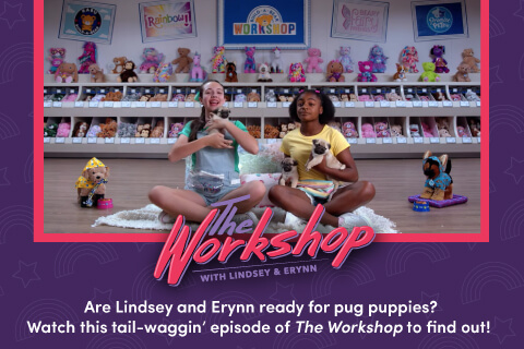 The Workshop - Are Lindsey and Erynn ready for pug puppies? Watch this tail-waggin' episode of The Workshop to find out!