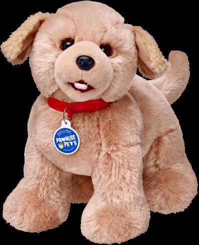 Promise Pets™ Golden Retriever